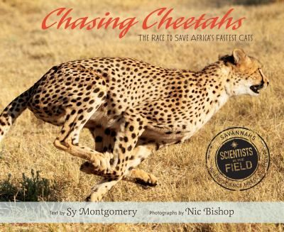 Describes the cheetah's essential role in the ecosystem and the ways in which Namibia's Cheetah Conservation Fund is promoting cohabitation between cheetahs and farmers.