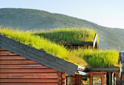 BrightNest | Living Roof - grow grass or a garden on your roof!