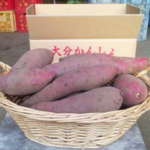 サツマイモ 「べにはるか」 5kg大分有機かぼす農園株式会社