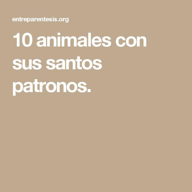 10 animales con sus santos patronos.