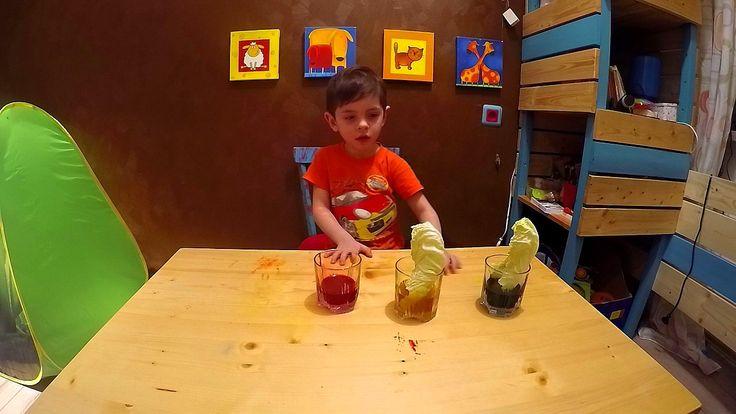 Эксперимент для детей по окрашиванию листьев капусты Артем проводит опыт...