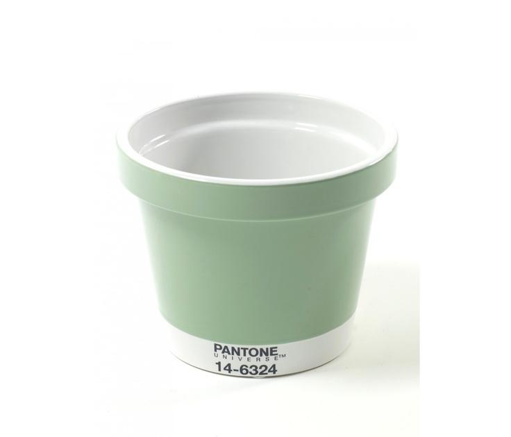 Pantone Mint - SERAX