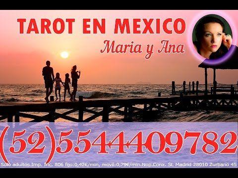 # AHORA VIDENCIA, TAROT DEL AMOR TAROT, ASTROLOGIA, HOROSCOPO, HECHIZOS Mexico: (52)5544409782  Consultas de tarot y videncia desde Mexico, Horoscopo, Hechizos, cartomancia, astrología Mexico: (52)5544409782 Números de teléfono almacén en M...  #eltarot #horoscopo #horoscopoparahoy #horoscopos #tarot #tarotamarres #tarotcertero #tarotdelamor #tarotdelamorenfemenino #tarotdelamorgitano...