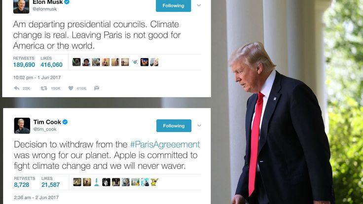 Decyzja Donalda Trumpa o wycofaniu się z Stanów Zjednoczonych porozumienia klimatycznego w Paryżu wywołała burzę w świecie biznesu. Prezydenta ostro skrytykowali m.in. prezesi Tesli, Apple oraz Disneya.