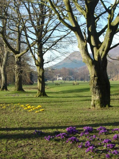 Spring in Fitz Park, Keswick