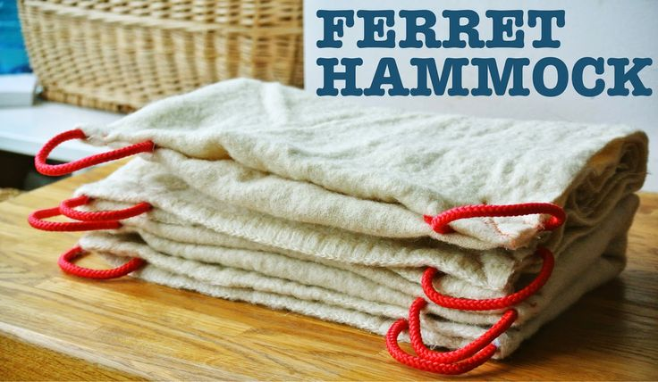 The easiest DIY ferret hammock, pet hammock | Oy Boy!