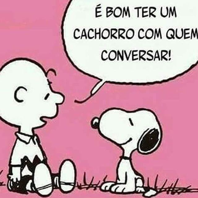 EU CONVERSO!❤❤️ #petmeupet #cachorro #amocachorro #viralata #cachorroetudodebom #gato #filhode4patas