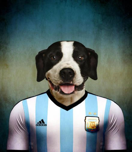 Tonight Argentina !
