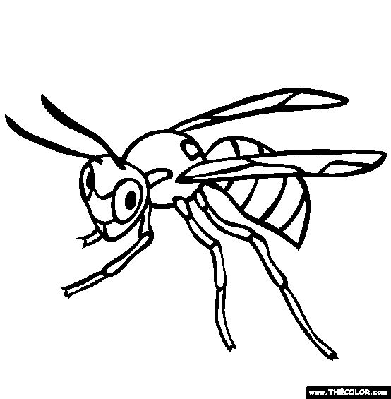 Coloring Pages Of Dangerous Animals : Best dangerous animal theme images on pinterest