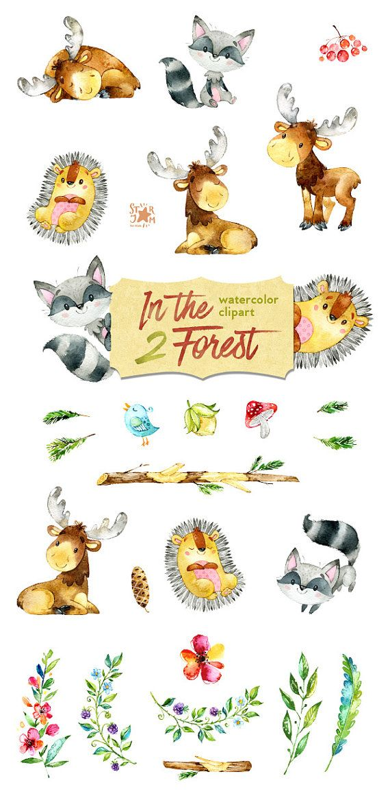 In the Forest 2. Watercolor animals clip art elk от StarJamforKids