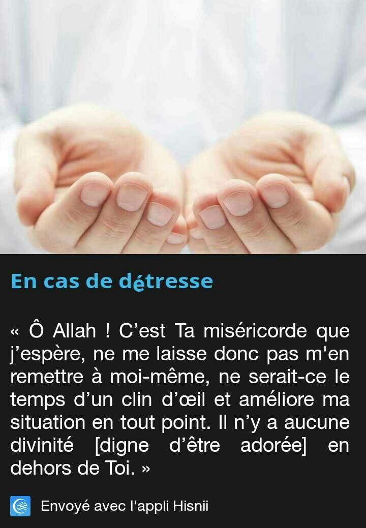 Assez Les 83 meilleures images du tableau Islam sur Pinterest | Religion  JM91