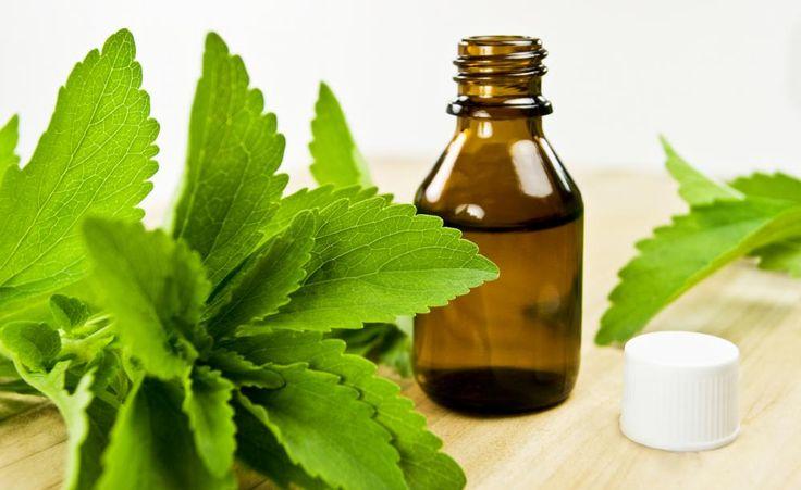 Die bekannteste Zucker-Alternative ist die Stevia-Pflanze. Sie enthält kaum Kalorien, schadet den Zähnen nicht und ist sogar für Zu einem feinen Menü gehört ein leckeres Dessert, denn auf die Nascherei zum Schluss verzichtet keiner gerne. Gut, dass es natürliche Zucker-Alternativen gibt, bei denen man ohne schlechtes Gewissen zugreifen darf.