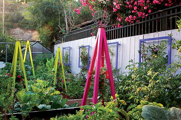 This edible vegetable garden uses colorful trellises to add order and drama.  GardenDesign.com: Arbors Trellis, Gardens Inspiration, Edible Gardens, Colors Trellis, Colorful Trellis, Vegetables Gardens, Trellis For Vegetables, Veggies Gardens, Bright Colors
