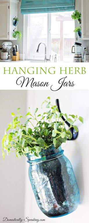 Hanging Fresh Herbs in Mason Jars | Cool Mason Jar Crafts Ideas and DIY Projects
