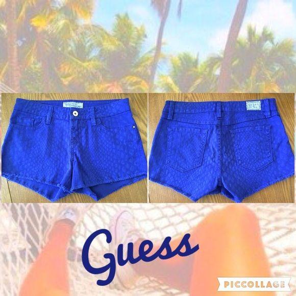 Best 25  Cobalt blue shorts ideas on Pinterest   Purple shorts ...