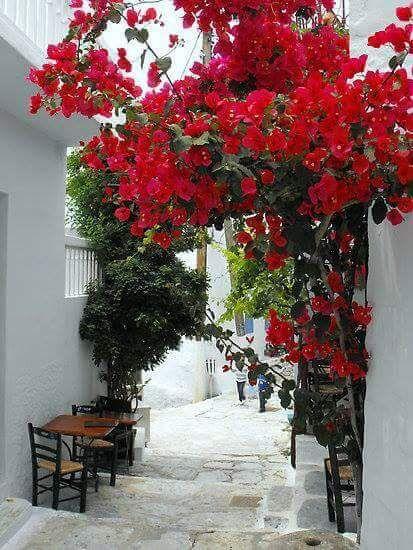 Sifnos Photo by Irene Kassai