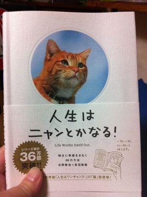 かわいい猫がはげましてくれる♡「人生はニャンとかなる!」 絶望したときに読む本