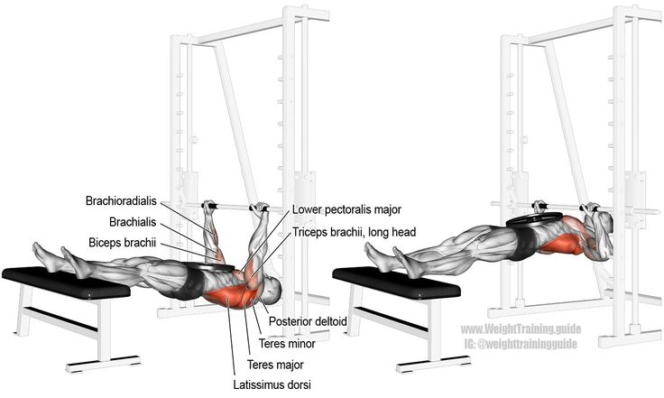 Weighted inverted row (aka weighted body row, weighted supine row, and weighted Australian pull-up). A compound exercise. Target muscles: The back in general. Synergists: Latissimus Dorsi, Teres Major, Infraspinatus, Teres Minor, Middle and Lower Trapezius, Rhomboids, Posterior Deltoid, Brachialis, Brachioradialis, and Lower Pectoralis Major. Dynamic stabilizers: Biceps Brachii and Triceps Brachii (long head only).