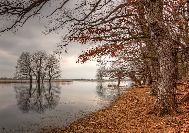 The new Autumn | Oder River, Germany - #Sumfinity HDR Photography