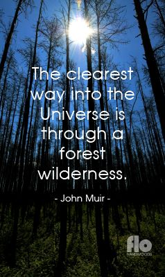 The clearest way into the Universe is through a forest wilderness. ~John Muir #FLOhardwoods