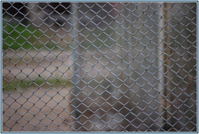 Unusually Cedar Split Rail Fence Cost