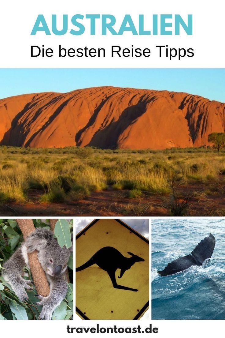 Australien Ostkuste 7 Highlights Von Melbourne Uber Sydney Bis Cairns Australien Reise Reisen Australien