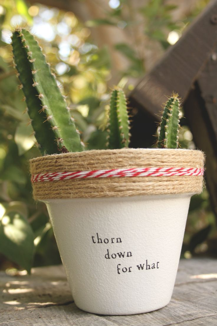 Thorn Down for What by PlantPuns on Etsy