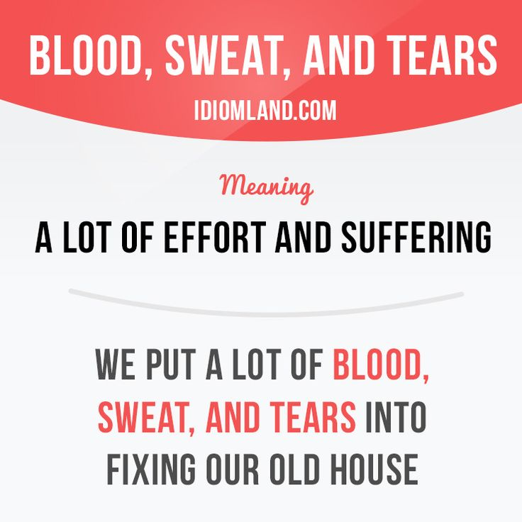 """""""Blood, sweat, and tears"""" is a lot of effort and suffering. Example: We put a lot of blood, sweat, and tears into fixing our old house."""