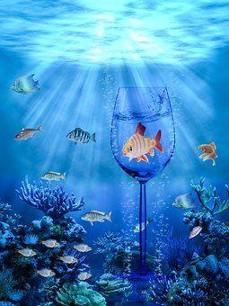 Ψάρια, Ωκεανών, Γραφικών, Χρώματα
