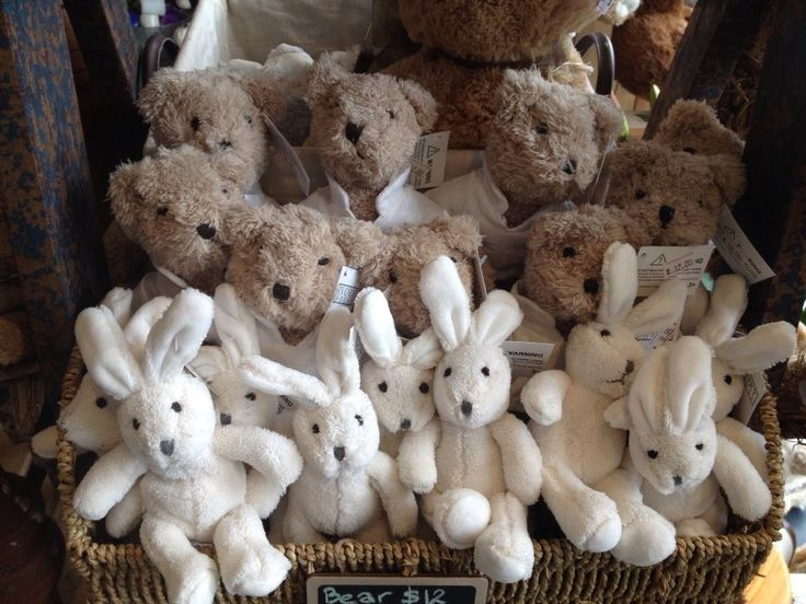 Barney Bears and Roger Rabbits at Twigs Florist at Varsity Lakes www.twigsflorist.com.au