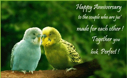 """Happy anniversary to the couple who are jus' made for each other! together you look perfect.""  #wedding #anniversary #wishes #quotes"