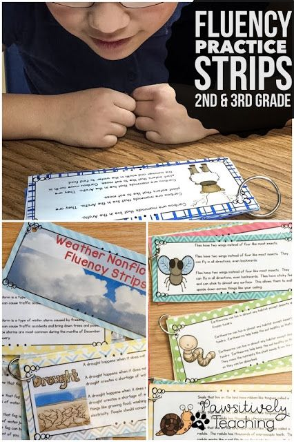 Fluency Practice Strips Bundle ~ Perfect for 2nd & 3rd Grade