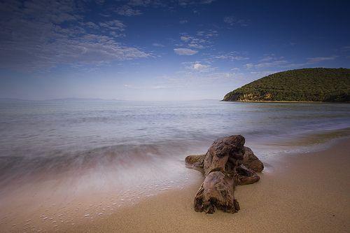 Cala Violina a special Maremma Tuscany beach