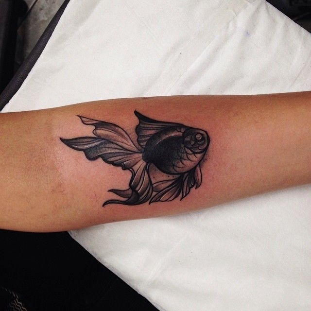 Small Grey Tattoo: Small Black And Grey Goldfish Tattoo On Arm By Pari