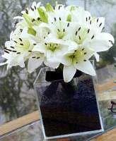 Combo Tutoriais: Arranjos de flores - Casando Sem Grana