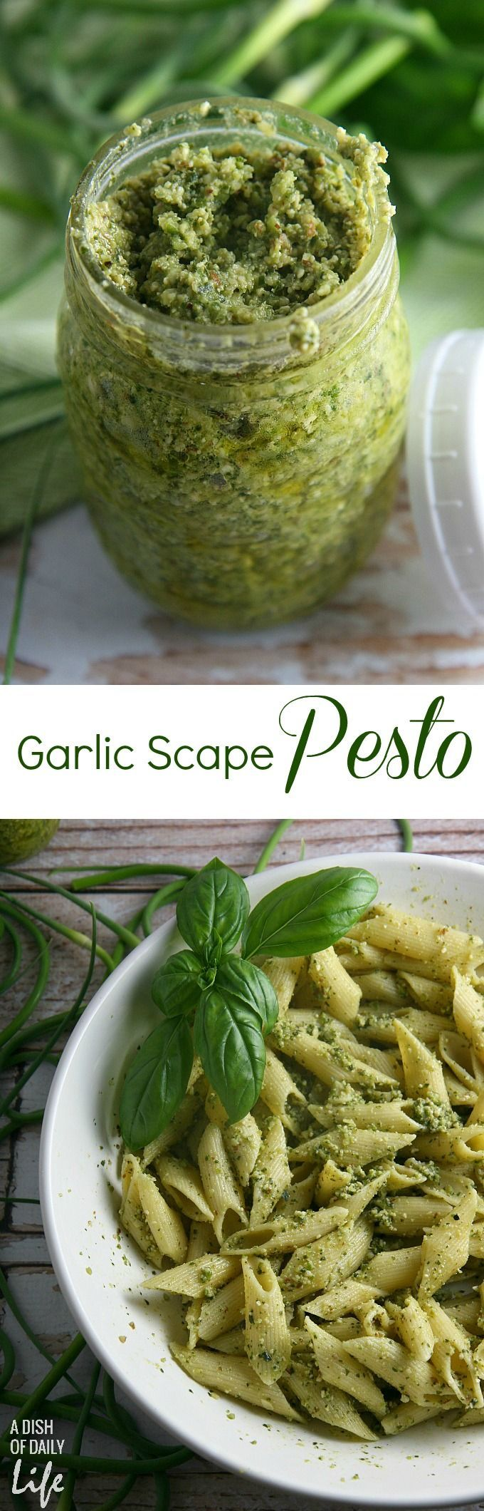 Garlic Scapes Pesto Sauce...a healthy dinner recipe the whole family will love! Serve this vegetarian farmer's market favorite over pasta or chicken, spread on sandwiches or paninis, pizza, or even as an appetizer dip for bread! Freezes well too.