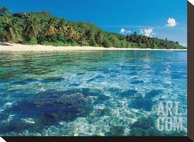 Tropical Sea Beach Rainforest Stretched Canvas Print at Art.co.uk