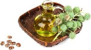 Castor oil is very beneficial for skin and remove stretch marks from the skin and it is more beneficial for pregnant women as well as a person who has fever