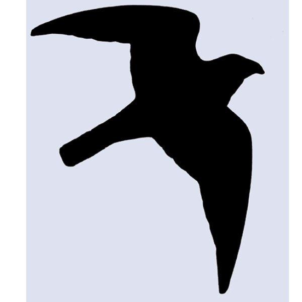 Rovfågel siluett 12 x 17 cm