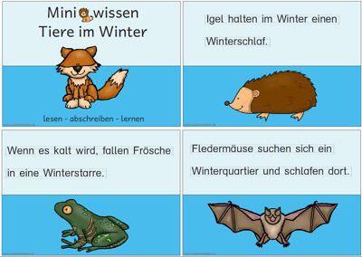 13 best deutschunterricht mm images on pinterest
