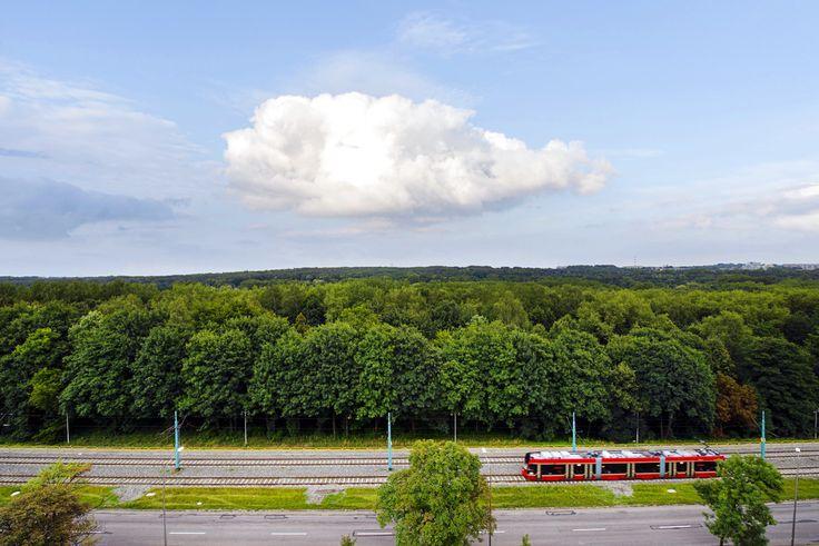 Kto chciałby mieć taki widok z okna? Mieszkania z widokiem na Park Śląski są wciąż dostępne!