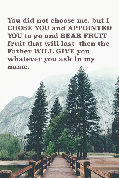"John 15:16 ""I chose you to bear fruit....Father will give you whatever you ask in my name."""