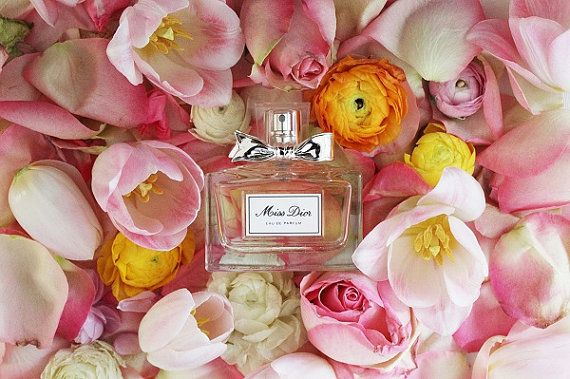 Miss Dior Perfume Beauty Bathroom Decor by PetalsandJasmine