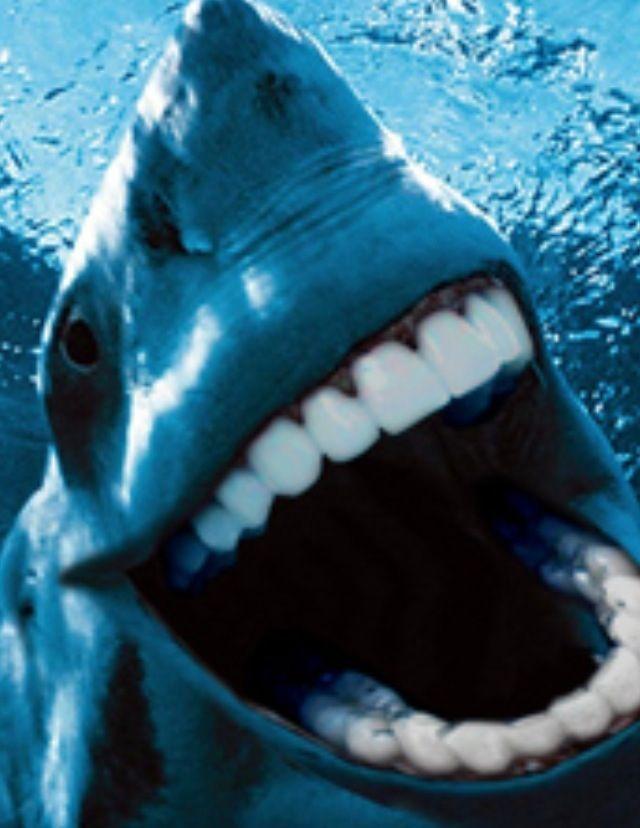 with teeth Sharks people