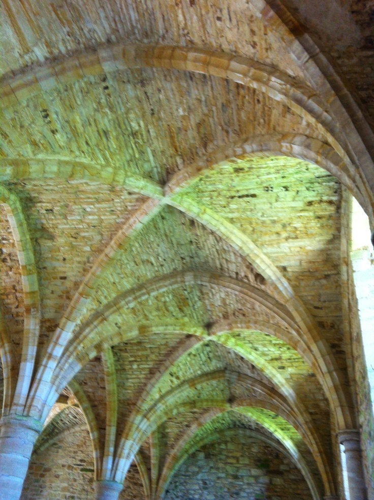 I love these Norman arches at Battle Abbey in Sussex.  I love the way they catch the light and that they are nearly 1000 years old!