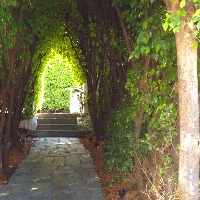 The enlightened path at The Delano Miami, FloridaBeautiful Hotels, Favorite Places, Gardens Entrance, Delano Miami, Adventure Guide, Gardens Paths, Miami Contest, Enlightenment Paths, Delano South