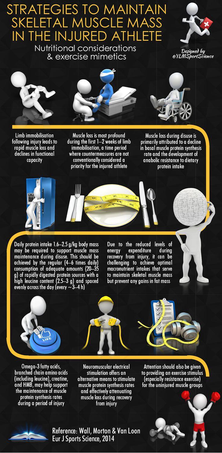 Injury Rehabilitation Nutrition Strategies to