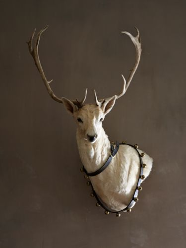 Contrasting Colors-  The living-room walls wear a darker custom-mixed color—the perfect foil for a mounted white deer found at an Atlanta flea market. It dons sleigh bells year-round.  Read more: Rooms with a Neutral Palette - Decorating with White - Country Living  Follow us: @countryliving on Twitter | CountryLiving on Facebook   Visit us at CountryLiving.com