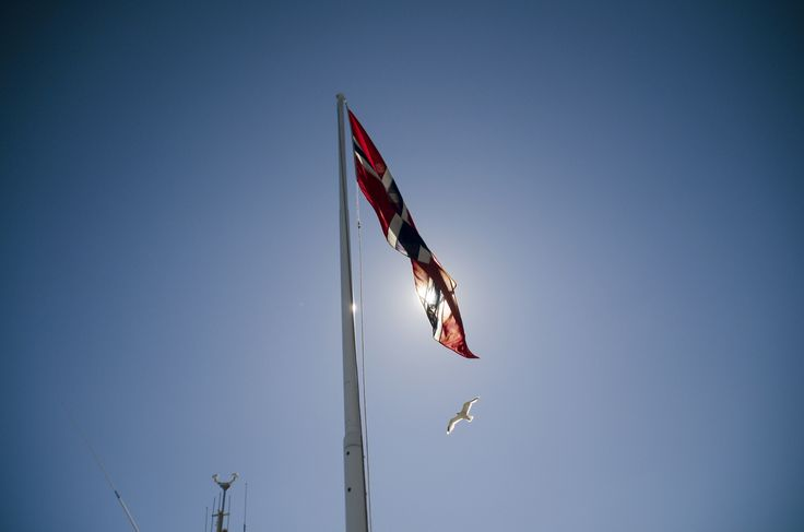 Flag and seagull in Kristiansund in Norway