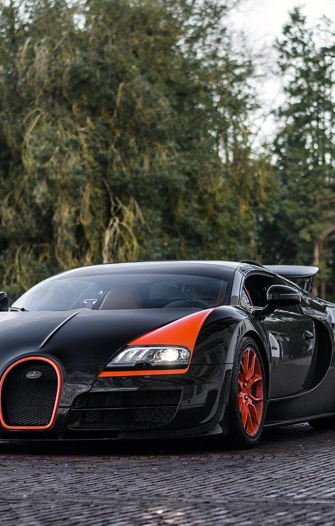 Bugatti Veyron Grand Sport WRC